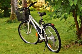 Велосипеды, виды особенности